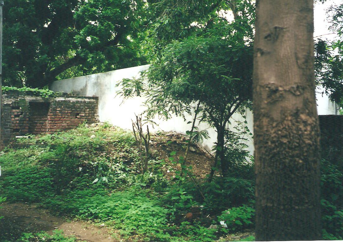 Ahimsa hill